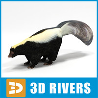 Skunk by 3DRivers