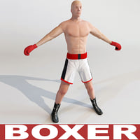 3d boxer games modelled model