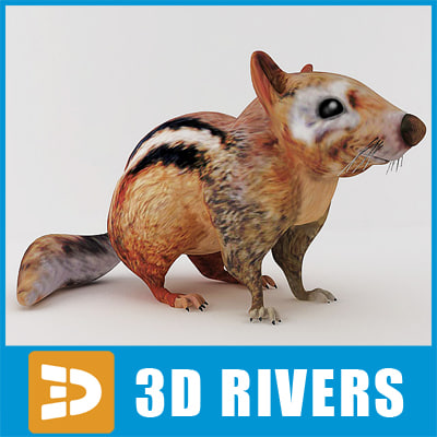 3d model cute chipmunk animals