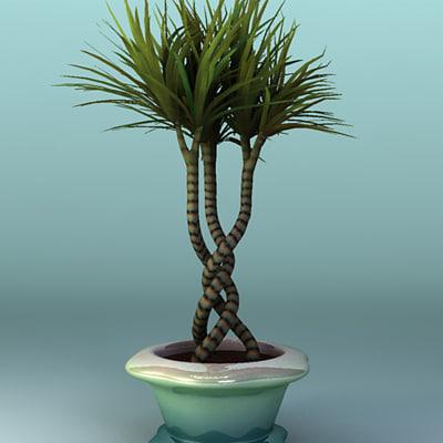decorative plant 3d max