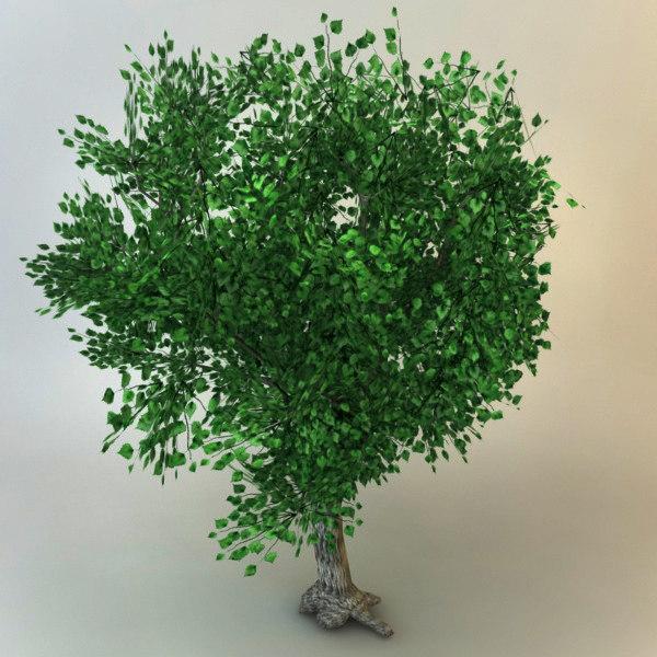3d tree 03