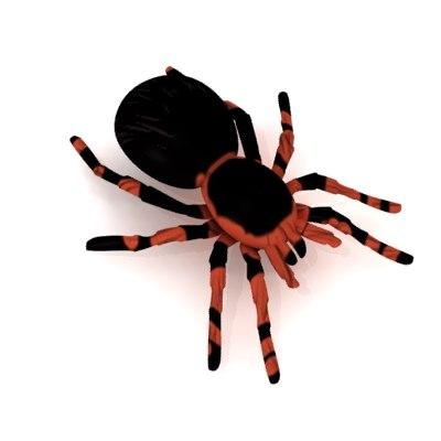 tarantula redknee 3d model