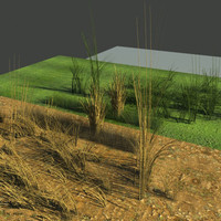 3d model physical green grass