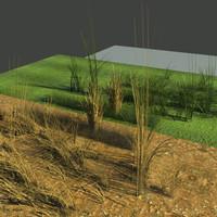 3d model physical green grass