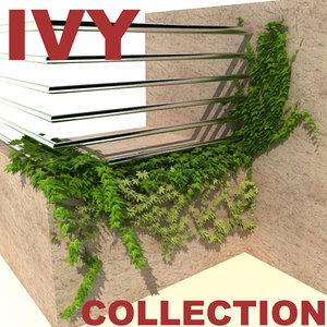 ivy modelled 3d model