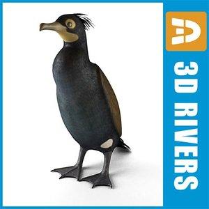 extinct spectacled cormorant bird 3d model