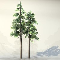 Tree_033.zip