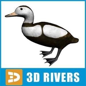 3ds max labrador duck