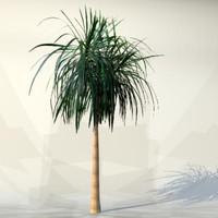 pc palm 3d max