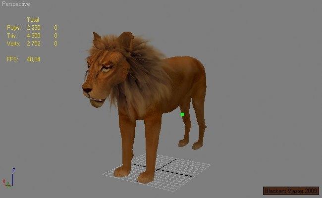 3d lion games