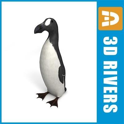great auk bird 3d max