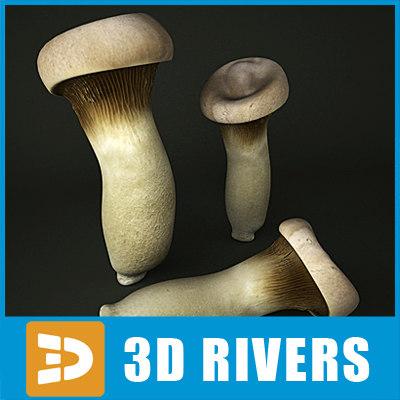 3d king oyster mushroom