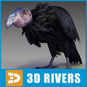 3ds max california condor bird