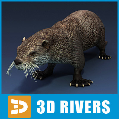 sea otter animals 3d max