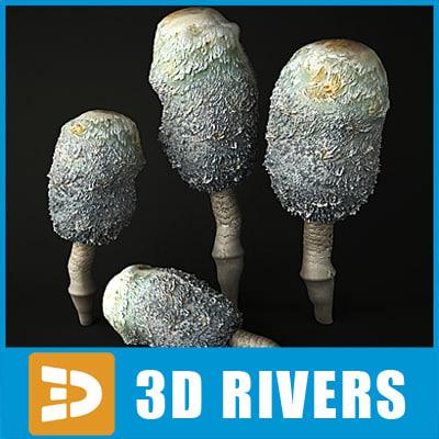 shaggy mane mushroom 3d model