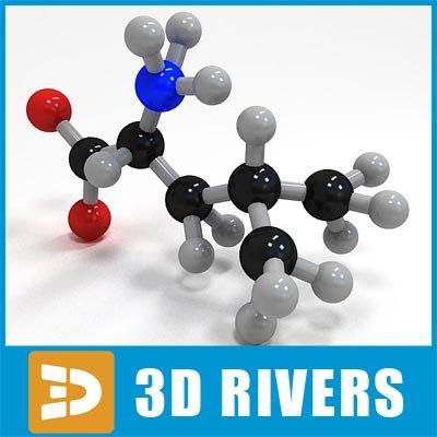 leucine molecule 3d model