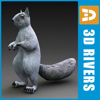 squirrel animals 3dr142 3d model