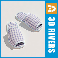 3d house slippers shoes model
