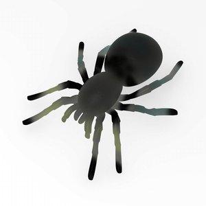 3d tarantula model