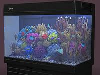 Aquarium Red Sea MAX 250