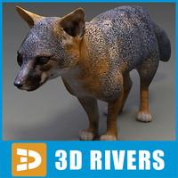 island fox 3d max