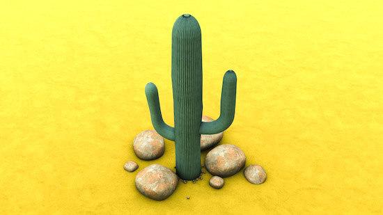 3d model cactus desert sand