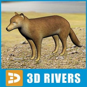 3ds falkland islands wolf dog