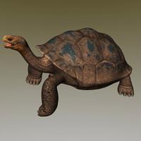 obj giant tortoise
