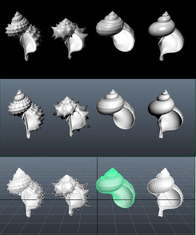 shells 3d fbx