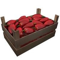 paprika food 3d model
