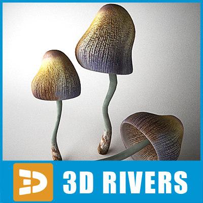 3ds max mica mushroom