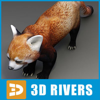Red panda by 3DRivers