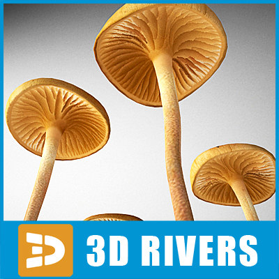rooted oudemansiella mushroom 3d 3ds