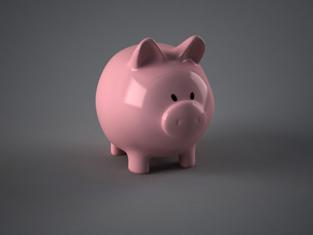 pig coin bank max