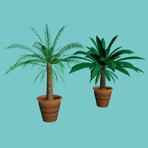 3d model potted palm trees