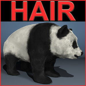 panda bear c4d