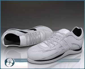 sneaker typical shoe max