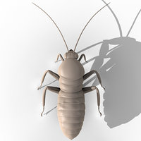 3ds max cockroach