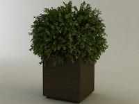 maya planter box