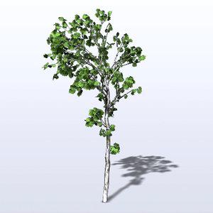 obj maple tree