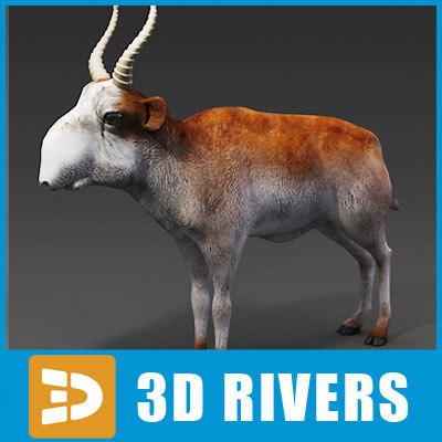 saiga antelope 3d 3ds