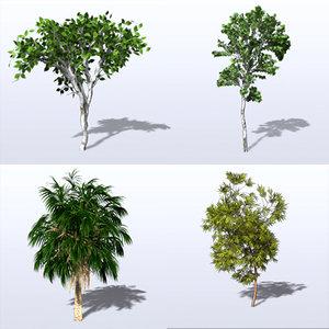 3d model trees leaf bark