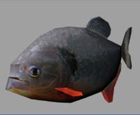 rigged piranha ma