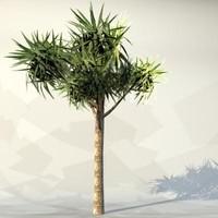 palm-022.zip