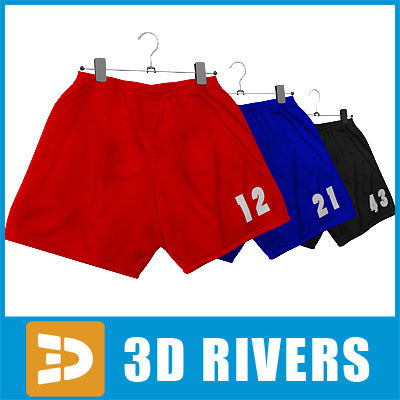 sport shorts set clothes 3d max