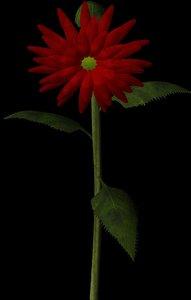 3d flower velvet queen helianthus model