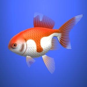 3dsmax goldfish