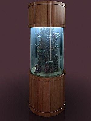 aquarium neptune red sea max
