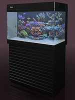 aquarium red sea 250 3d model