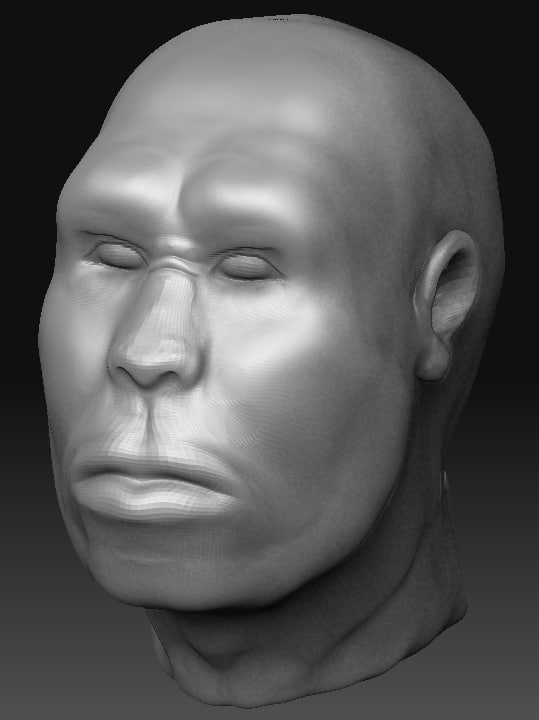 3d max head homo erectus
